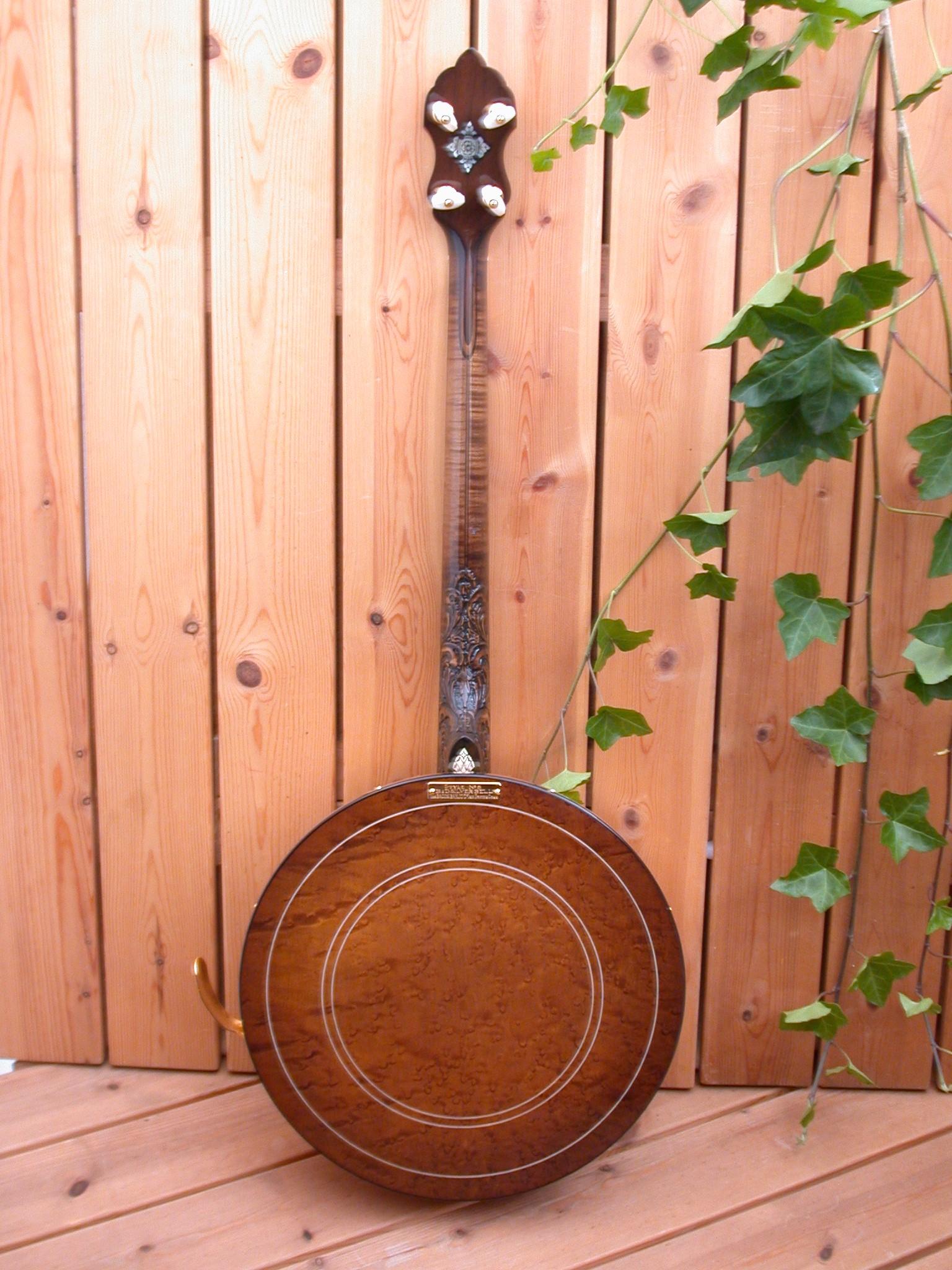 string xxx banjo