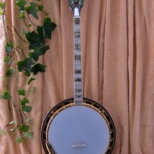 Gibson AllAmerican 1