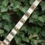 Gibson Florentine Ser. 91xx 9