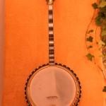 Slingerland Troubadour 1